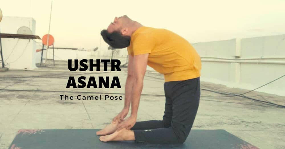 How to do Ustrasana (Camel Pose) – Steps, Benefits and Contraindications