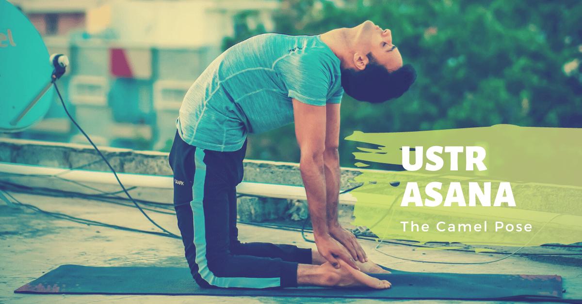 Ustrasana (Camel Pose) - Yoga with Ankush