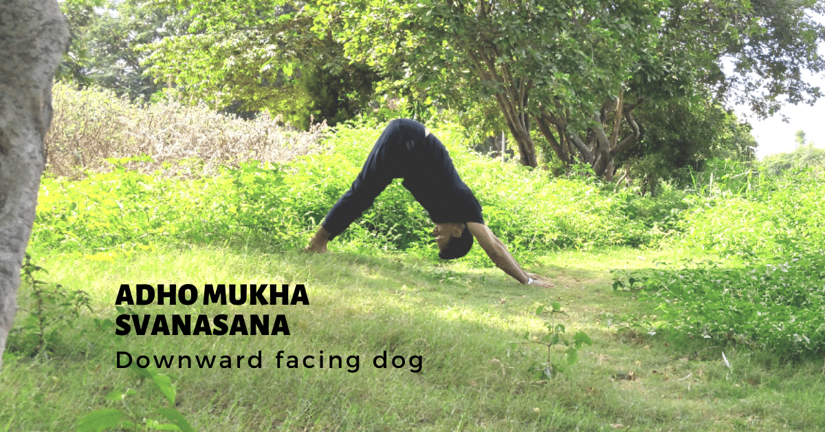 Adho Mukha Svanasana - Downward Dog Pose - Yoga with Ankush