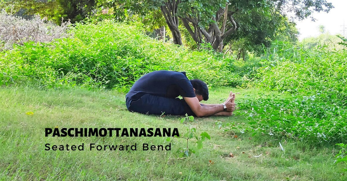 Paschimottanasana - Seated Forward Bend - Yoga with Ankush